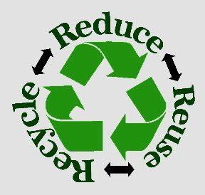 Environment today essay